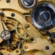 The mechanism of an old watch — Stock Photo #9641818