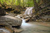 Waterfall and a calm stream gently flowing through a forest — Stock Photo