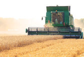 Harvester working — Stock Photo