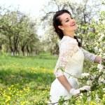 Apple blossom — Stock Photo #25579053
