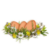 Easter card for the holiday with egg on the white background — Stock Photo