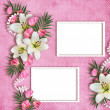 Card for the holiday with flowers on the abstract background — Stock Photo #23407980
