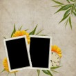 Card for the holiday with flower — Stock Photo #2748895