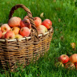 Stock Photo: Apples in a basket