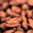 coffee beans — Stock Photo #14337725