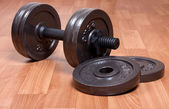 Dumbbell — Foto Stock