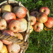 Apples in a basket — Stock Photo #21285831