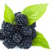 Blackberries — Foto de stock #32412265
