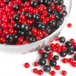 Berries — Stock Photo