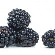 Blackberries — Foto de stock #33229517