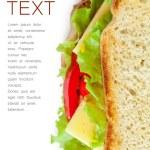sándwich — Foto de Stock