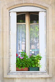 Traditional window whith flowers — Stock Photo