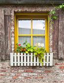 Ročník okno s květinami — Stock fotografie