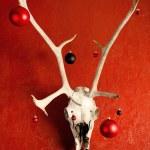 gotický Vánoce — Stock fotografie