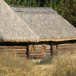 Ancient wooden house. Museum Pyrohiv. Kiev. — Stock Photo