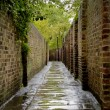 Stock Photo: Alleyway