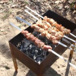 Beef kababs on the grill — Stock Video #19797725