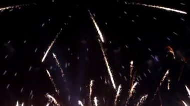 Colorful fireworks at holiday night — Stock Video