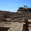 Ruins of the ancient amphitheater in Tarragona, Spain — Stock Photo #13251941