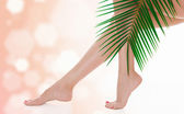 Woman legs and green palm bough — Stock Photo