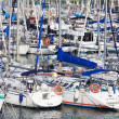 White yachts on anchor in harbor — Stock Photo #23238502