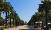Jaime I street in Salou, Spain — Stock Photo