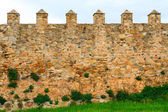 Old wall of the Santa Maria de Poblet cloister, Spain — Stock Photo