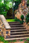 Parkta yaşlı merdiven — Stok fotoğraf