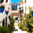 Beautiful street with flowers in the Mijas town, Spain — Stock Photo