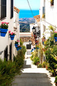 Beautiful street with flowers in the Mijas town, Spain — Stockfoto