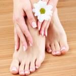Beauty treatment of a female feet — Stock Photo