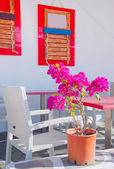 Restaurant on the narrow street of the island in Greece with tables and shrubs flowers — Stock Photo