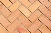 Paving slabs in the form of bricks. Background. Texture. — Stock Photo