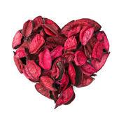Valentine theme — Stock fotografie