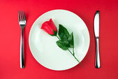 Rose in a plate — Stock fotografie
