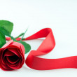 Red rose and ribbon — Stock Photo