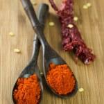 Red chilli powder — Stock Photo #40881375
