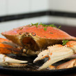 Stock Photo: SFrancisco Dungeness crab