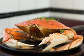 San Francisco Dungeness crab — Photo