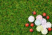 Spring theme — Stock Photo