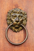 Lion head door knob. — Stock Photo