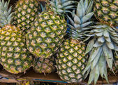 Pineapple (Ananases) at market. — Stock Photo