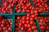 Tomatoes at vegetables market. — Stock Photo