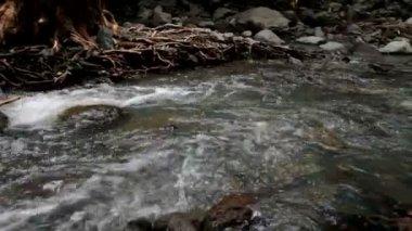 поток — Стоковое видео