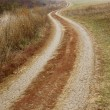 Stock Photo: Dirtroad