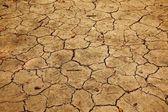 Soil — Foto Stock