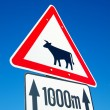 Stock Photo: Cow sign
