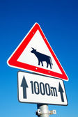 Cow sign — Stock Photo