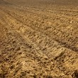 Soil — Stock Photo