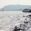 Stock Photo: Winter Danube